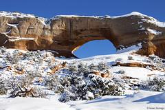 Snow on Wilson Arch (isaac.borrego) Tags: snow desert moab utah canonrebelt4i arch