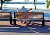 Heat (Alain Rempfer) Tags: streetphotography candidphotography candidportrait candidsnapshot emotion peopleinthestreet photoderue publicspace espacepublic scenederue scenedevie scenefromthestreet urban portraiture viequotidienne dailylife photographienonposée unposedphotography nikon nikond7000 mer sea borddemer seaside beach plage