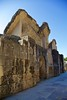Italica-38 - Version 2 (Paco Barranco) Tags: italica santiponce sevilla ruinas romanas españa spain trajano adriano