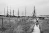 Pathstanding (Jakend) Tags: moor belgium high black blackandwhite bw trees gras way walk path finder landscape people mel melancholy ttrollo wendler jakend nikon d3300 nohashtag