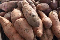 January 14: Rough Potatoes