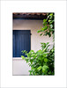 Blue Shutter and Green Leaves. (Mikec77) Tags: calm blue green shutters white relax