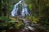 Nelson Falls (Santanu Banik) Tags: nelsonfalls waterfall tasmania australia rainforest franklingordonwildriversnationalpark nationalpark cascade moss fern
