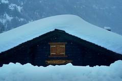 One tonne / cubic metre (ColmDub) Tags: grimentz snow alps valais switzerland snowfall mountains alpine plough dog man