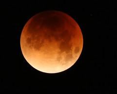 Lunar eclipse (lenswrangler) Tags: lenswrangler digikam moon eclipse bloodmoon bluemoon threesacrowd flickrfriday lunar crater fullmoon