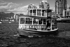 The Vancouver Aquabus - False Creek (SonjaPetersonPh♡tography) Tags: vancouver bc britishcolumbia burrardinlet burrardstreetbridge cambiestreetbridge granvilleisland granvilleislandmarina granvillestreetbridge granvilleislandpublicmarket canada nikon nikond5200 inlet ocean boating scienceworld aquabus falsecreek falsecreekferries bcplacestadium waterscape cityscape vancouverskyline vancouverharbour downtownvancouver