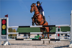 Ukraine. Brech. (vzotov.doc) Tags: horse ukraine brech r lm ois vladimir zotov xc50230mmf4567 fujifilm xt1