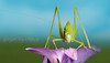Katydid (Red Gecko Photography) Tags: katydid insect purple flower macro closeup macrodreams
