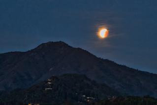 Blue Blood Moon Recedes over Tam