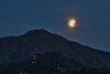 Blue Blood Moon Recedes over Tam (Gorgeousgrandma) Tags: mttamalpais mt tam blood moon over