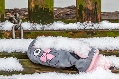 Missing Mitten (Cold Hands?) (Photo_stream_this) Tags: rufford park nottinghamshire lost property snow glove bench