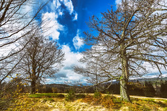 Sereneness (*Capture the Moment*) Tags: 2017 clouds elemente farbdominanz fotowalk himmel reflections reflexion sky sonya7m2 sonya7mii sonya7mark2 sonya7ii sonyfe1635mmf4zaoss sonyilce7m2 wasser water wolken blau blue monochrome
