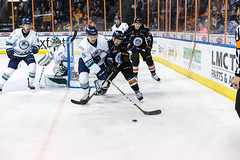 "Kansas City Mavericks vs. Florida Everblades, February 18, 2018, Silverstein Eye Centers Arena, Independence, Missouri.  Photo: © John Howe / Howe Creative Photography, all rights reserved 2018 • <a style=""font-size:0.8em;"" href=""http://www.flickr.com/photos/134016632@N02/40387891081/"" target=""_blank"">View on Flickr</a>"