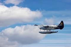 Flight (agent1320) Tags:
