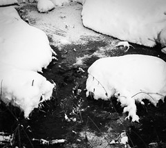 Острова / The Islands (Yuri Balanov) Tags: bw nature snow winter blackandwhite abstract pentax pentaxk5iis tamron tamron90mm tamron90macro