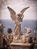Waverley Cemetery 15 (Mariasme) Tags: waverleycemetery angel stfrancis challengeyouwinner cyunanimous matchpointwinner t614