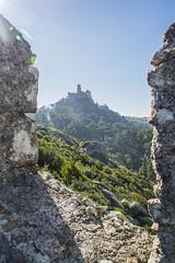 Vecinos (palm z) Tags: sintra portugal castelo mouros castillo moros ruinas