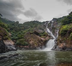 Dudhsagar Falls (ashwin647) Tags: india waterfalls goa dudhsagar dudhsagarwaterfalls nature kulem karnataka bhagawanmahavir forest monsoon cloudy rainy