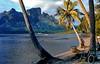 Biking around Bora Bora (gerard eder) Tags: world travel reise viajes oceania frenchpolynesia polynesia polynésiefrançaise tahiti borabora tropical tropicalisland tree tropicalislands paisajes playa panorama palmeras palmen palmtrees wasser water landscape landschaft natur nature naturaleza outdoor mountains montañas berge gebirge bicycle