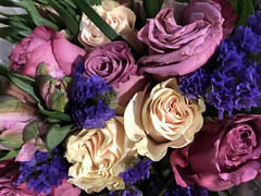 """If you cannot find peace within yourself, you will never find it anywhere else."" ―Marvin Gaye 🌷💐🌹 (anokarina) Tags: illinois il harwoodheights chicago marianos flowers roses blossoms blooms bouquet purple blue violet ivory white queenrose"