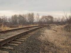 railway11 (Dreamaxjoe) Tags: vasút celldömölk iparvágány elhagyatott railway outofservicerailroadtrack aftersunrise napfelkelteután