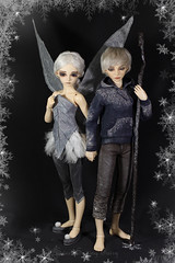 Winter Fairytale (Sewing Fairy) Tags: bjd msd minifee activeline aline boy girl mir mika fairyland halloween event head halloween2014eventhead cpfairyland cosplay custom doll dress winter wig white ice snowflake fairy wings jack frost jackfrost