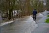 Main (sibwarden) Tags: hochwasser main