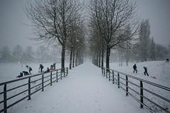 Winter (XxMaaikeew) Tags: winter snow sneeuw kids slee brug