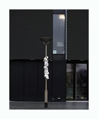 Sans titre (hélène chantemerle) Tags: noir blanc rue lampadaire chiffon black white street lamppost rag objettrouvé