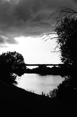 sacramento river / (luustra) Tags: white black ql ft canon 50 plus panf ilford
