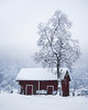 Cottage in the fields (Nippe16) Tags: snow winter landscape moody atmosphere misty foggy frost ice finland dreamy house tree