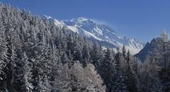 Combins (bulbocode909) Tags: valais suisse montchemin chezlarze massifdescombins forêts arbres nature montagnes neige givre bleu paysages automne