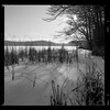 Bronica SQ-A-011-002 (michal kusz) Tags: bronica sqa ilford delta 100 professional ddx lake ice squere film 120 bw winter poland monochrome snow tree zenzanon 80mm epson v600 frame sq blackandwhite grey grass forest format 6x6 medium