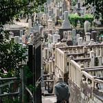 Japanese senior visiting the graveyard   PA201836 thumbnail