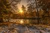 Winter Walk (Steve Samosa Photography) Tags: crathie scotland unitedkingdom gb winter winterscene snow snowscene river riverdee balmoral wintersun sunlight sunbeams cairngorms