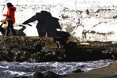 Il ritratto di Dorian Gray (meghimeg) Tags: 2018 rapallo passeggiata walk donna woman cane dog mare sea scogli rocks ombra shadow sole sun acqua water roccia rock animale