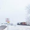 _DSC1374 (kanokwalee) Tags: bigbend westtexas winter 2017 christmas newyear