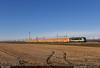 Arenaways' Farewell (Marco Stellini) Tags: arenaways captrain italia astrid e436 bb36300 sncf vercelli novara piemonte risaie treno