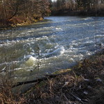 wildes Wasser 002 thumbnail