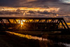 A quick flash (Peter Leigh50) Tags: train railway bridge freightliner rural river water sun sunlight sky class 66 shed