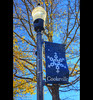 Downtown Cookeville, Tennessee Lamp Post (J.L. Ramsaur Photography) Tags: jlrphotography nikond7200 nikon d7200 photography photo cookevilletn middletennessee putnamcounty tennessee 2017 engineerswithcameras cumberlandplateau photographyforgod thesouth southernphotography screamofthephotographer ibeauty jlramsaurphotography photograph pic cookevegas cookeville tennesseephotographer cookevilletennessee tennesseehdr hdr worldhdr hdraddicted bracketed photomatix hdrphotomatix hdrvillage hdrworlds hdrimaging hdrrighthererightnow lamppost banner snowflakebanner cookevillesnowflakebanner lamp bluesky deepbluesky beautifulsky sign signage it'sasign signssigns iseeasign signcity smalltownamerica americana fall autumn fallinthesouth tennesseefall fallcolors colorful red orange yellow brown fallseason autumncolors autumninthesouth fallleaves tennesseeautumn leaves autumnleaves leaf fallintennessee autumnintennessee