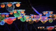DSC_1707-Edit (DigitalDabbles) Tags: chinese lantern koka booth cary nc festival