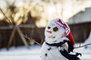 scarfy snowman (auntneecey) Tags: snowman scarfysnowman morning bokeh 365the2017edition 3652017 day355365 21dec17 essence odc