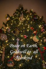 Peace (Peeb-OK) Tags: holiday peace cheer christmas goodwill nikon photoshop