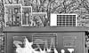 pollutant (Harry Halibut) Tags: 2017©andrewpettigrew allrightsreserved contrastbysoftwarelaziness noiretblanc blackwhite blancoynegro blanc weiss noire schwatz bw zwart wit bianco nero branco preto blackandwhite imagesofsheffield images sheffieldarchitecture sheffieldbuildings sheffield south yorkshire publicartinsheffield public art streetart graffiti murals curved corners sheff1710274534 pollution environmental testing station monitor air quality trees fitzwilliam street