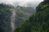 Lifting Fog (pokoroto) Tags: lifting fog ōitaprefecture 大分県 九州 kyushu 日本 japan 9月 九月 長月 くがつ kugatsu nagatsuki longmonth 2017 平成29年 fall autumn september