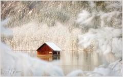 Almsee Fischerhütte (Karl Glinsner) Tags: österreich austria oberösterreich upperaustria landschaft landscape see lake schnee snwo winter almsee grünau outdoors