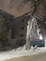 Frozen skeletal remains after a fire (canadianlookin) Tags: frozen fire disaster skeletal apartment