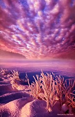 Wake The Sun (Phil~Koch) Tags: travel journey life mood emotions country outdoors colors living heaven weather horizons lines landscape field art meadow sky twilight horizon sunset clouds wisconsin scenic vertical photography office portrait serene morning dawn nature natural earth environment inspired inspirational season beautiful hope love joy dramatic unity trending popular canon rural fineart arts shadow sun sunrise light peace shadows blue white snow winter frozen endless frost lavender