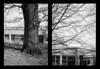 2017-04 - 087HF - Olympus Pen EE-3 FP4+_03 (sarajoelsson) Tags: 135 svartvitt blackandwhite bw filmgrain filmphotography film believeinfilm ilford everydaylife sweden stockholm digitizedwithdslr analog analogue teamframkallning ishootfilm urban city filmshooter xtol monochrome bnw spring fp4 olympus halfframe halvformat diptyk diptych filmisnotdead snapshot vardag olympuspenee3 springtime 2017 april